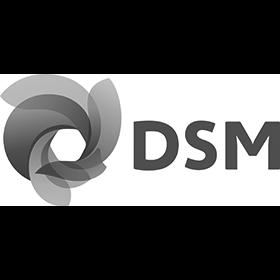 08_DSM_SimplifiedLogo